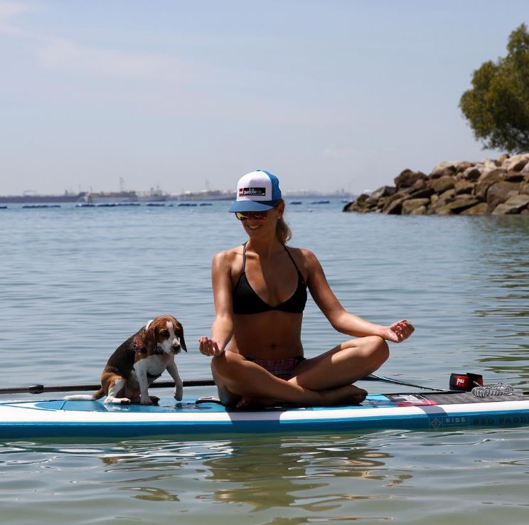 Meet Fury the Beagle who loves taking part in the stand up paddle boarding adventures