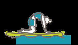 SUP yoga cat variations