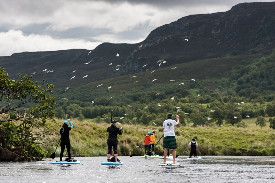 group of paddle boarders on river spey as birds fly overhead