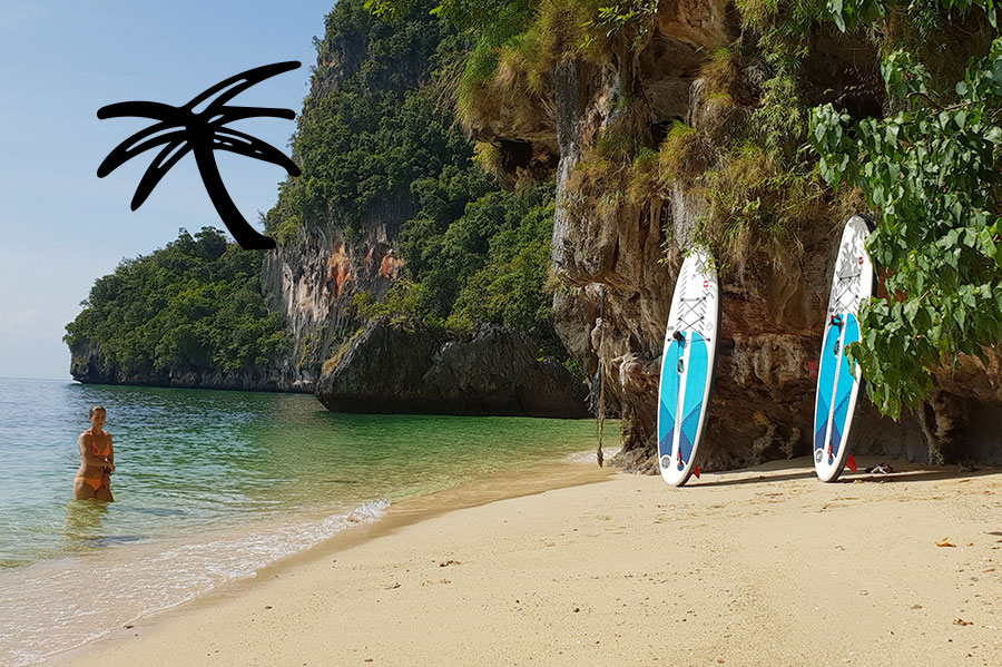 Paddle boards propped up on beach