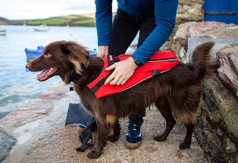 69d95af67d05--red-original-dog-buoyancy-story-jacket-putting-on